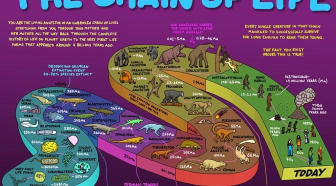 วิทย์ม.ต้น: COSMOS EP. 10 ข้อมูลที่คงอยู่นับพันล้านปี