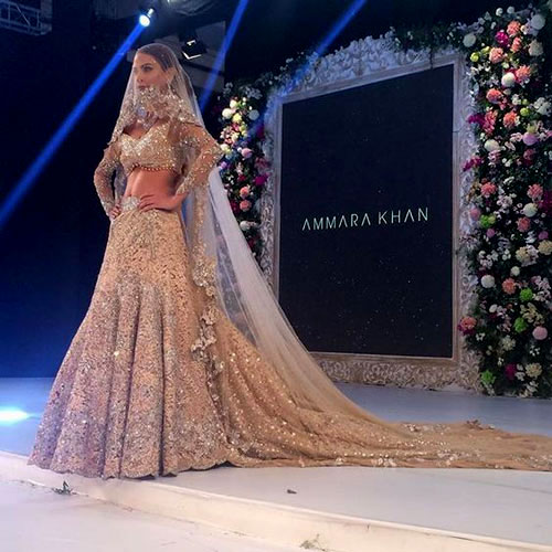 Trend Alert - Trains for the Indian Bride   Curated by Witty Vows   A train with the veil for the Indian Bride
