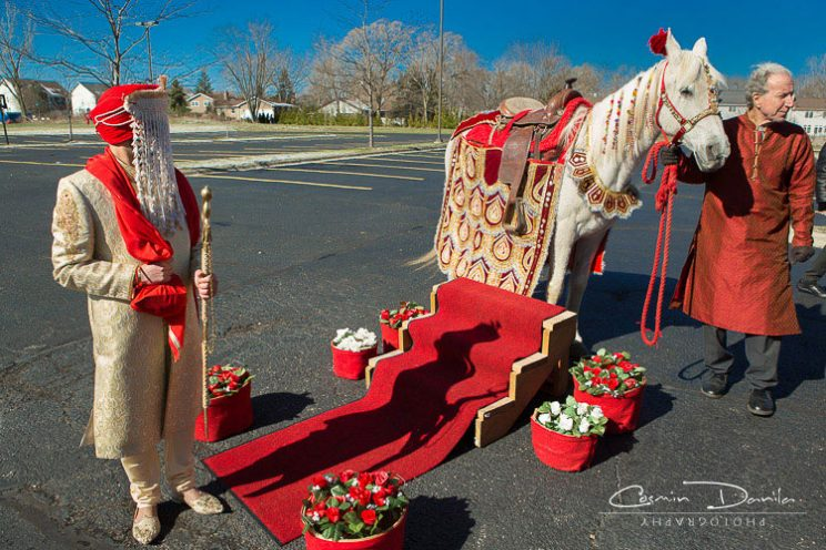 Fun new entry ideas for Indian Grooms | Indian groom entry ideas | Stylish decorated horse entry for the Indian Groom | Curated by witty vows