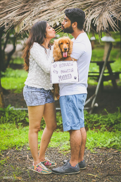 Indian pre wedding shoot with pets   seventy by two photography
