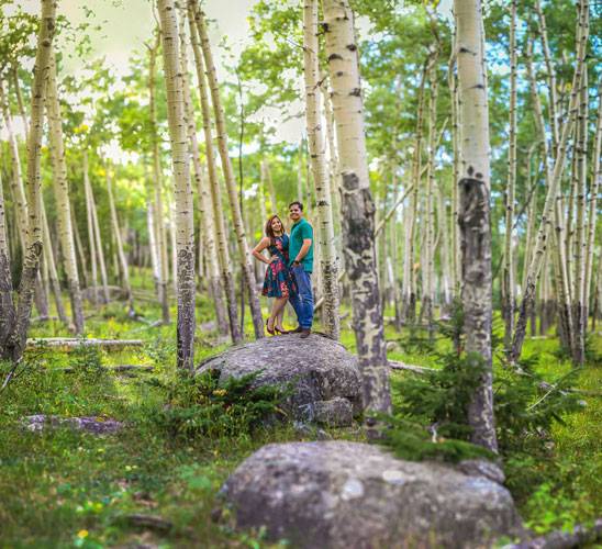Shipra and Sumer | a real pre wedding shoot in the states | indian couple pre wedding shoot by Nathan in a park or forrest | girl in a blue dress