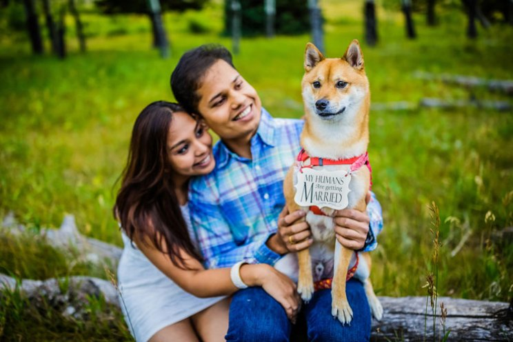 Shipra and Sumer | a real pre wedding shoot in the states | indian couple pre wedding shoot by Nathan in a park or forrest | Indian pre wedding shoot with the dog |my humans are getting married