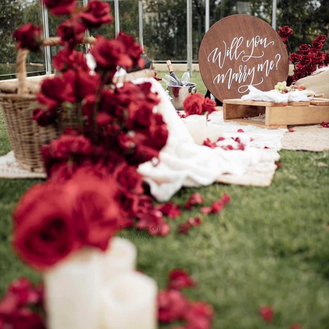 red roses | garden