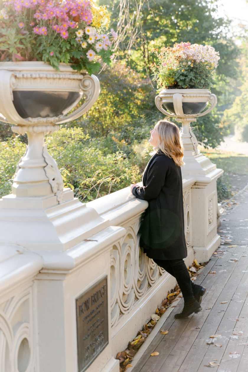 Central Park Bow Bridge I wit & whimsy