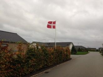 Danish flags on every block