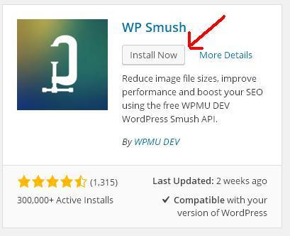 wpsmush install