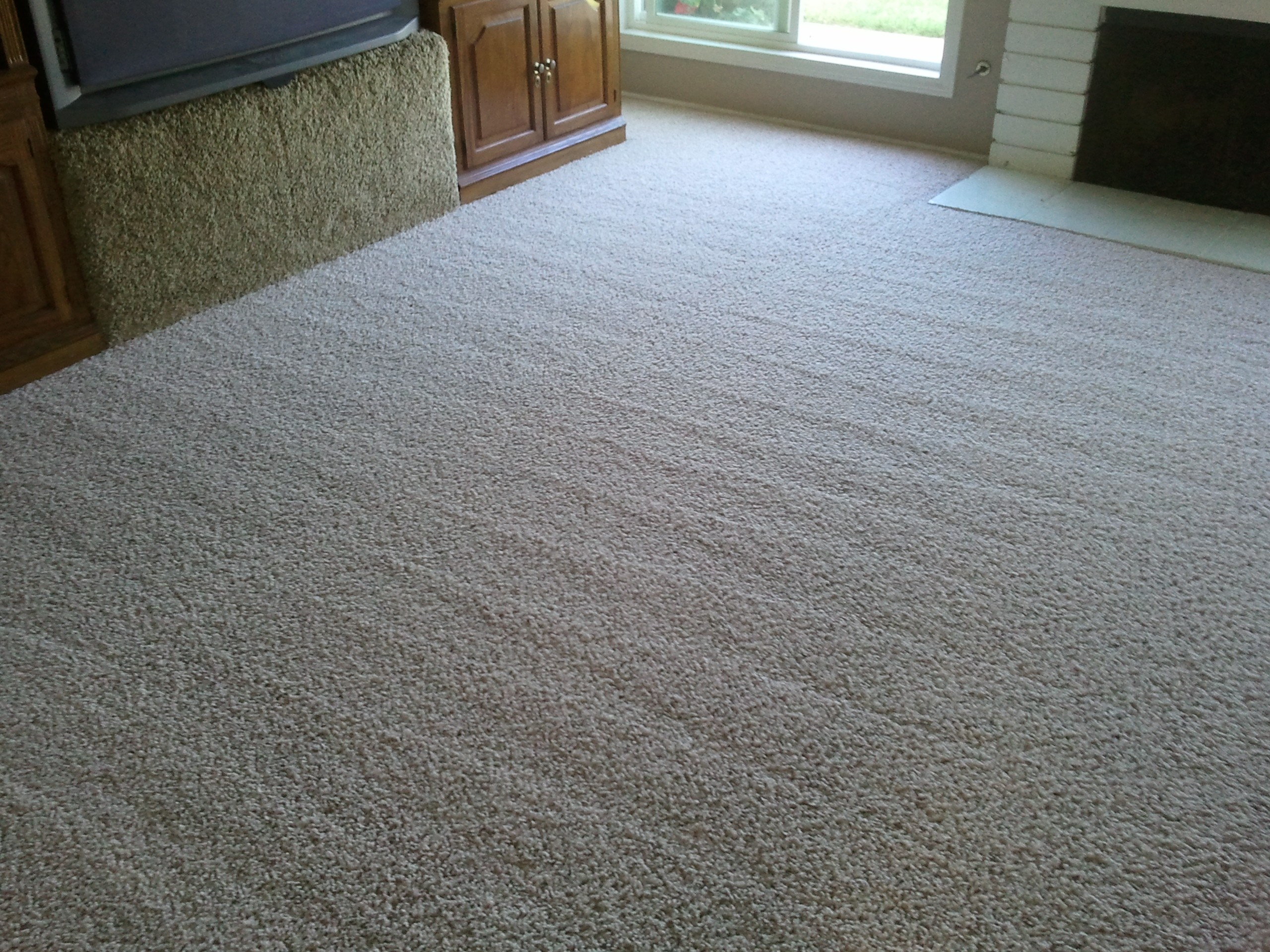 Best Types of Carpet for High Traffic Areas