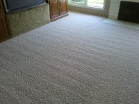 Best Types of Carpet for High Traffic Areas - Fox Lake, IL ...