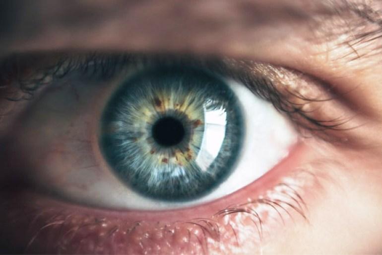 grapes improve eye health