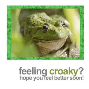 Fotofitz Feeling Croaky Get Well Greeting Card