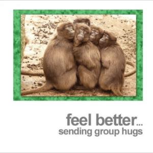 Fotofitz Feel Better Group Hugs Monkeys Get Well Greeting Card