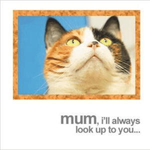 Mum I'll Always Look up to You Cat Greeting Card Mother's Day