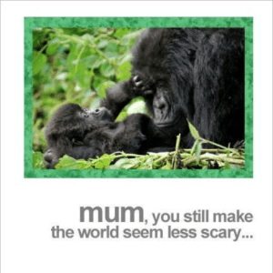 Mum Gorilla and Baby Mother's Day Greeting Card