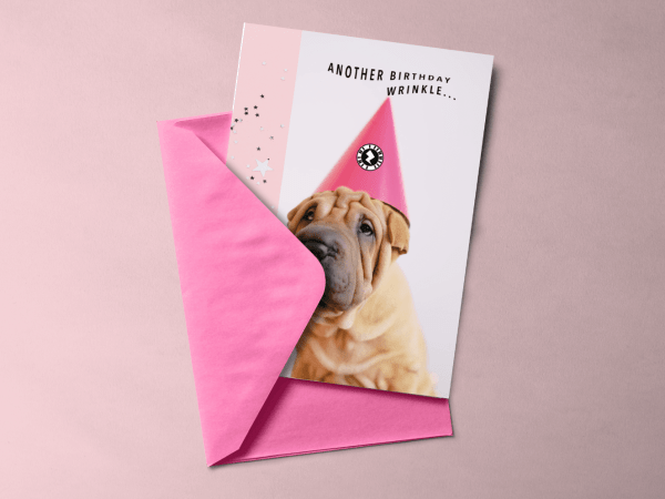 Another Birthday Wrinkle Pup Greeting Card AR