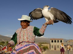 W stroju ludowym i z pięknym ptakiem (PERU)