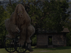 Hunting Sasquatch Equipment You Will Need To Find Bigfoot