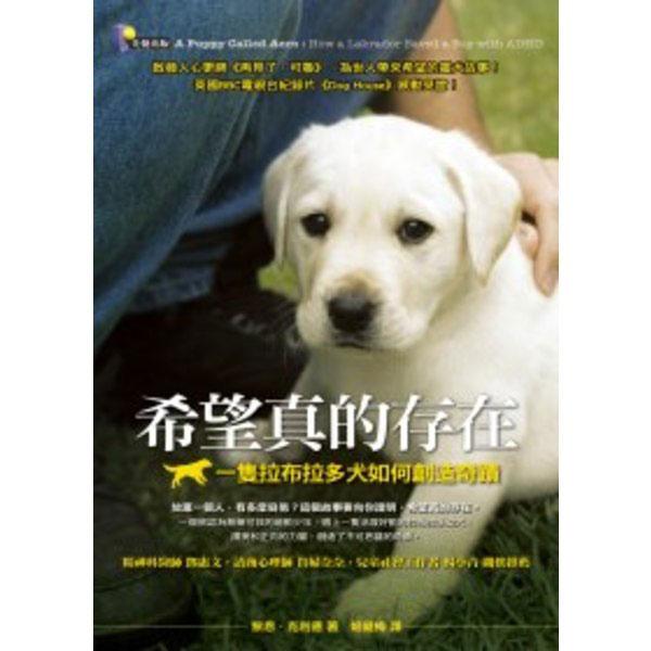 希望真的存在:一隻拉布拉多犬如何創造奇蹟