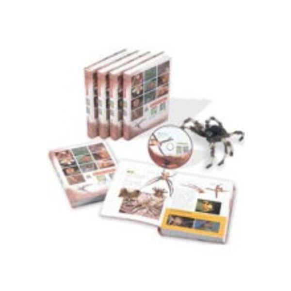 自然觀察圖鑑1-蜘蛛(附生態VCD)
