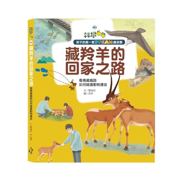 藏羚羊的回家之路:看青藏鐵路如何維護動物遷徙