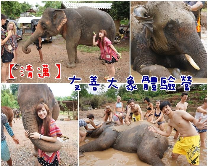 不騎大象,友善大象,大象泥巴浴,大象洗澡,泰國大象洗澡,泰國清邁自由行,清邁大象,清邁大象半日,清邁大象半日遊,清邁大象洗澡,清邁大象營,清邁大象行程,清邁必去,清邁自助旅行,清邁自由行,清邁行程推薦 @小環妞 幸福足跡
