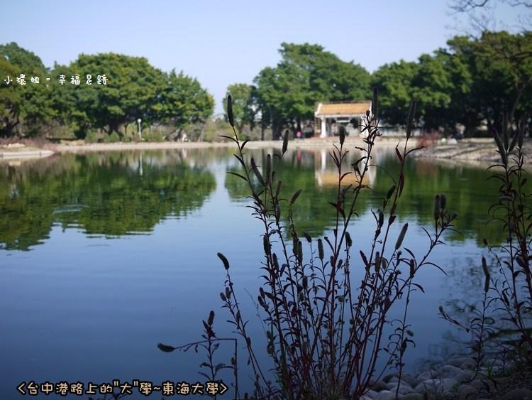 [玩♡台中-陽光。教堂。牧場。湖泊~盡在台中港路上~東海大學] @小環妞 幸福足跡
