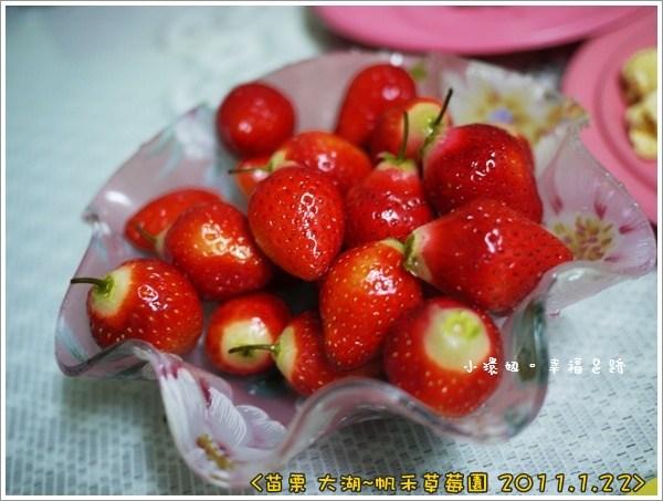 [玩♡苗栗-大湖草莓季,草莓田裡感受浪漫~帆禾草莓園] @小環妞 幸福足跡