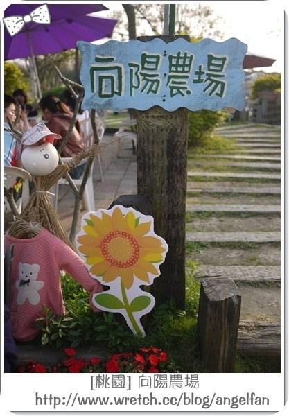 [玩♡桃園]-夕陽餘暉灑落太陽花。向陽農場 @小環妞 幸福足跡
