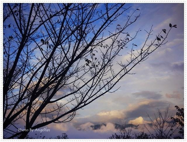 [玩♡新竹]如織如畫的動人雲海後夜驚魂~山上人家森林農場 @小環妞 幸福足跡
