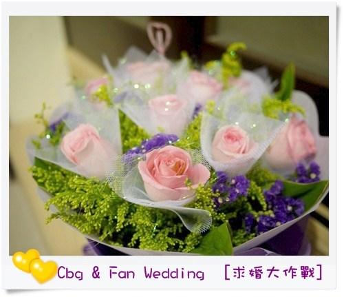 [♥囍♥]求婚大作戰,難忘的一天 @小環妞 幸福足跡