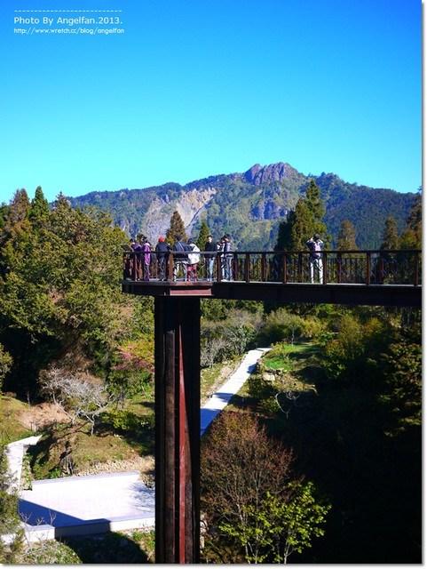 [嘉義旅遊景點]˙阿里山天空步道 ♥ 好膽你就來~離天空最近的步道,漫步在雲端 @小環妞 幸福足跡