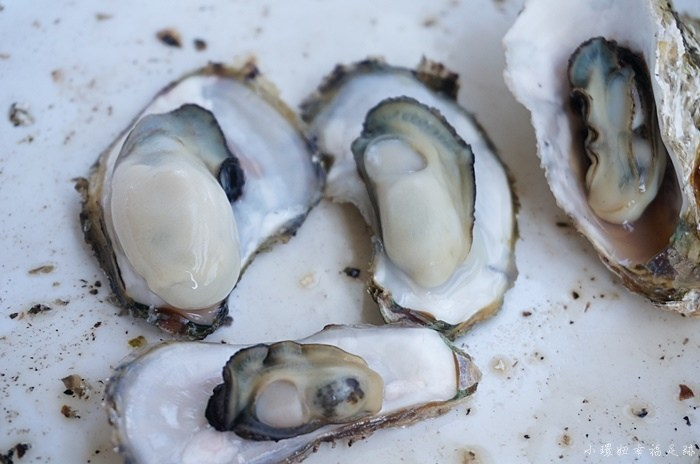 【澎湖必去海洋牧場】牡蠣吃到飽,釣魚,卡拉OK歡唱! @小環妞 幸福足跡