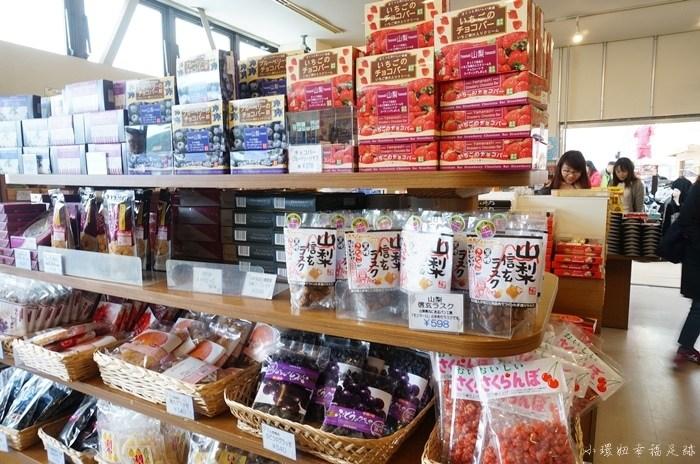 【河口湖景點推薦】河口湖自然生活館,看富士山絕景最佳角度 @小環妞 幸福足跡
