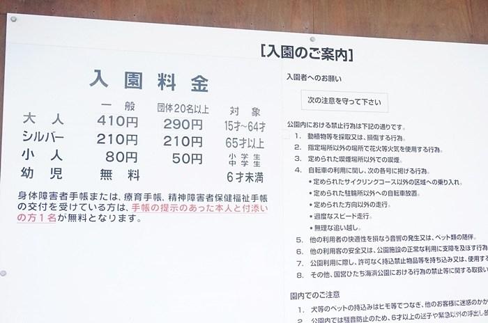 DSC00489.JPG