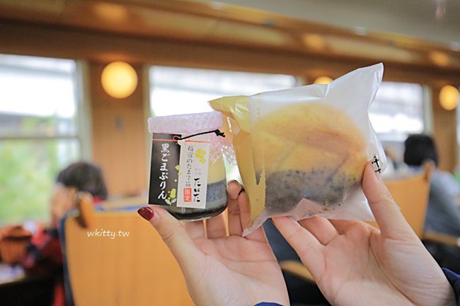 【九州特色列車】指宿玉手箱,鹿兒島去指宿,黑白郎君沿途海景超美 @小環妞 幸福足跡