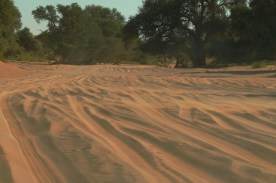 Nasz samochód bez problemu pokonuje piaszczystą drogę