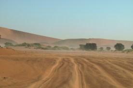 Aby dojechać do Sossusvlei gdzie są najwyższe wydmy, należy przejechać jeszcze 5 kilometrów po miałkim piachu