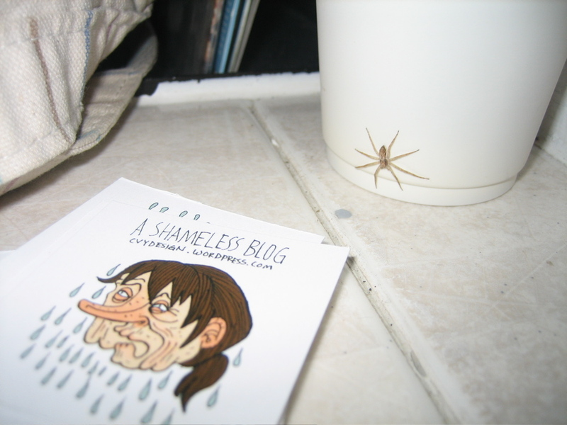 Spider and card phot by Aaron Lee