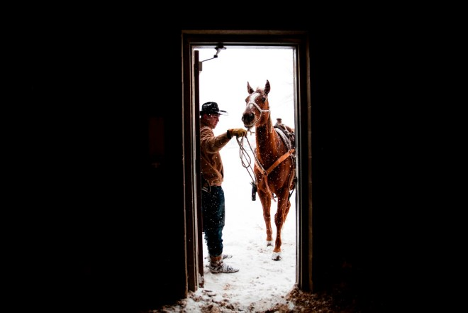 --FEB 14, 2016-- Bowling Green, KY -- Dawson Turner, 17, of Sydney, Arkansas opens the arena door for his horse, Django. Turner, who has been roping for four years, competed in the Calf Roping competition at the Lone Star Championship Rodeo at the L.D Brown Agricultural Exposition Center in Bowling Green, Kentucky on Sunday, February 14th, 2016. |Skyler Ballard (Photo by Skyler Ballard)