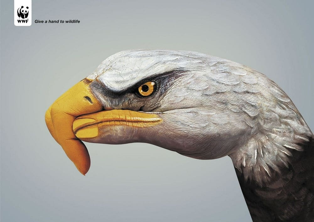 Kampania Podaj pomocną dłoń naturze - Give a hand to wildlife