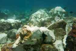 Statek wycieczkowy uszkodził 13,5 tysięcy metrów kwadratowych dziewiczej rafy koralowej w archipelagu Raja Ampat - wlaczoszczedzanie.pl