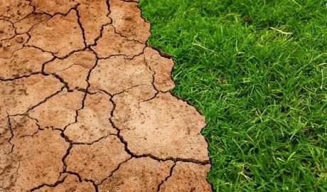 Polska aplikacja ClimateEx pokazuje jak bardzo zmieni się klimat w poszczególnych częściach świat