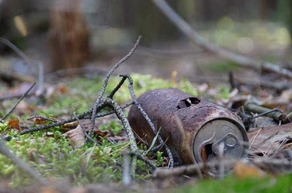 Pozostawione przez ludzi w lesie śmieci mogą być śmiertelną pułapką dla małych zwierząt