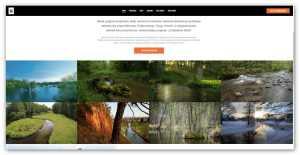 """Fundacja WWF rusza z nową kampanią """"Strażnicy rzek"""". Zachęca wolontariuszy z całego kraju do przekazywania informacji o stanie lokalnych rzek"""