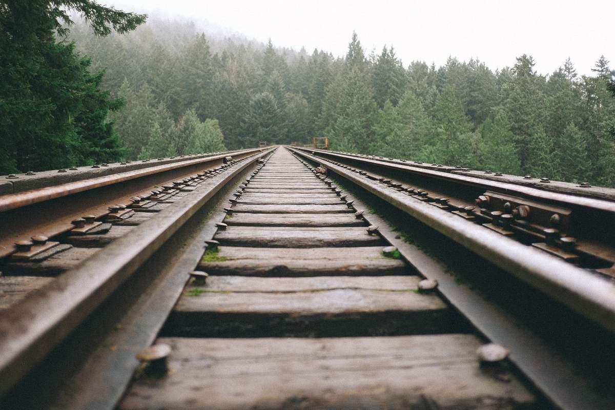 Drewniane podkłady kolejowe są toksyczne i rakotwórcze. Biolog z Uniwersytetu Warszawskiego opracowała niedrogą metodę ich utylizacji