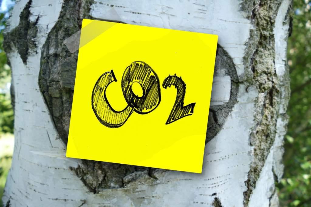 Rada Unii Europejskiej zatwierdziła cel osiągnięcia neutralności klimatycznej do 2050 roku. Polska poza głównym nurtem
