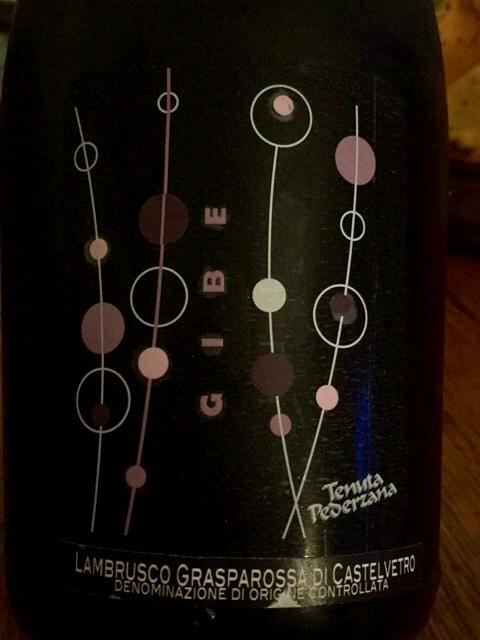 Label from bottle of Tenuta Pederzana Gibe 2013  Lambrusco Grasparossa di Castelvetro · Italy