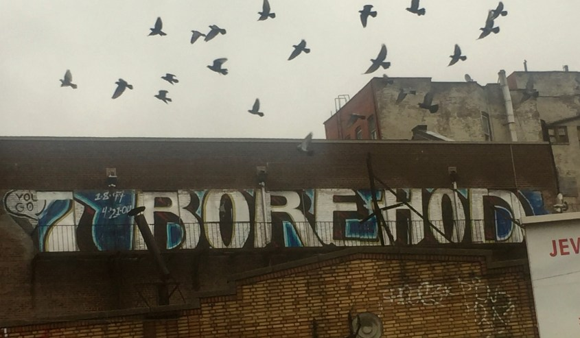 "Shot of ""You Go Borehod"" Grifitto as flock of pigeons fly by"