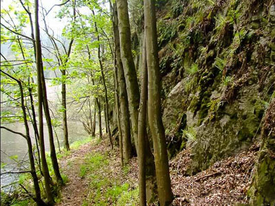 Ścieżka nad Bobrem w Pilchowicach