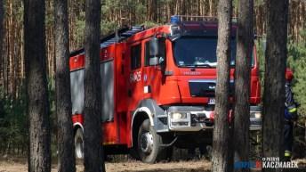 P1140145 (Copy)