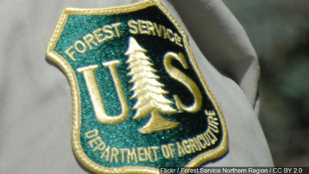 That change was included in the 2019 edition of scouts bsa requirements and is included below. Forest Service Officials Warn Of Increased Fire Dangers Wlos